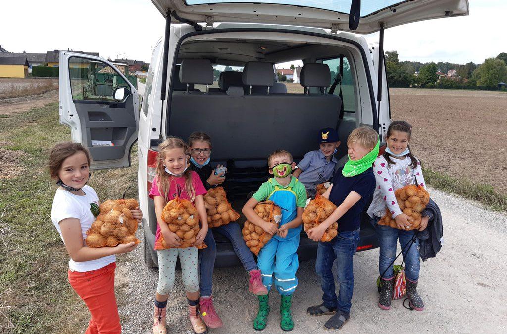 Fleißige Kartoffelbauern